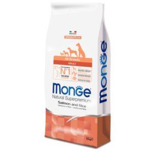 monge adult salmone