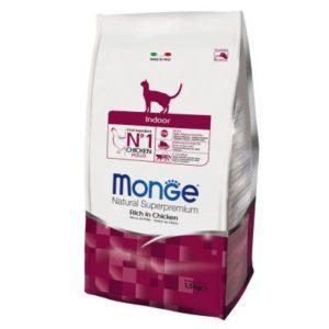monge cat indoor